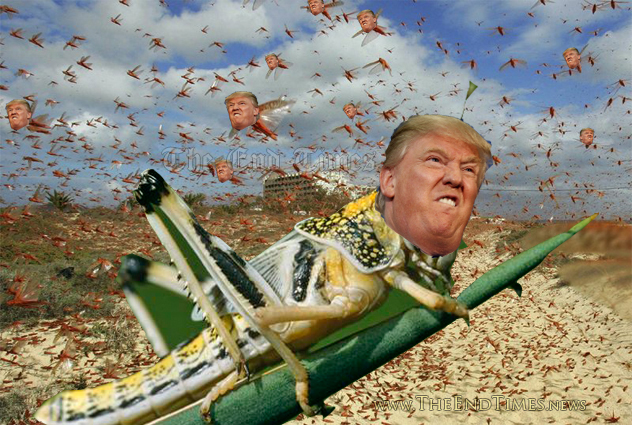 TrumpLocusts