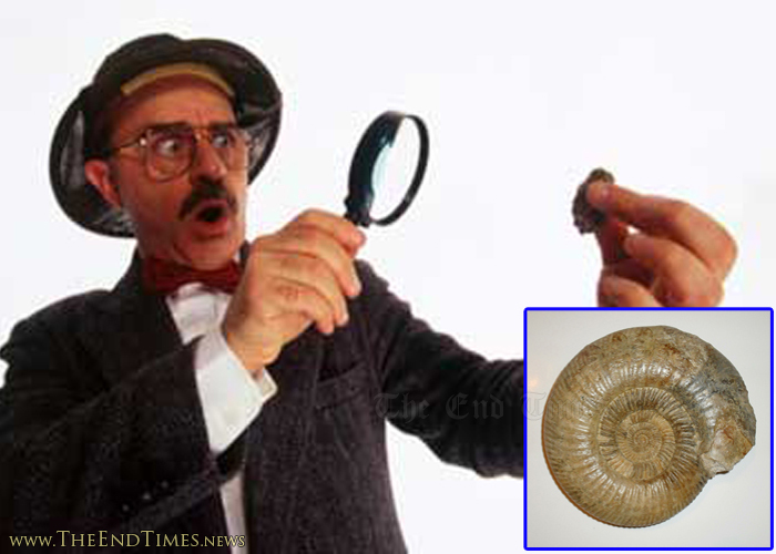 fossilworldview